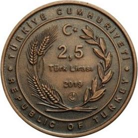 2,5 Lira Turkey
